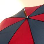 Umbrella Household Division